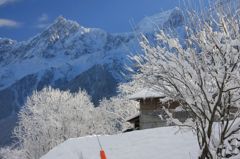 Snow-covered trees with the Aigulle du Midi in the background