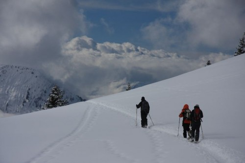 Open fields of fresh snow on the Aiguillette