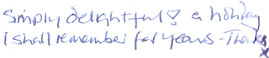 View more handwritten guest comments